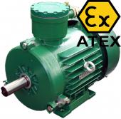 Взрывозащищенные асинхронные электродвигатели