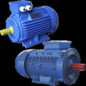 Общепромышленные асинхронные электродвигатели ГОСТ
